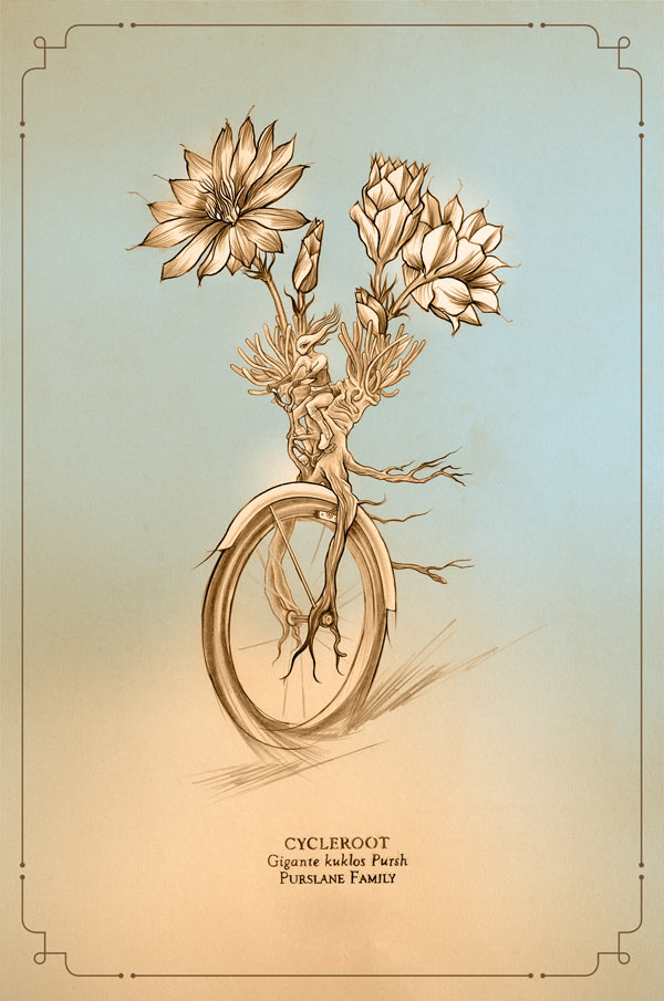 Cycleroot, graphite and digital, 12 x 18 in. @ 300 dpi, 2009